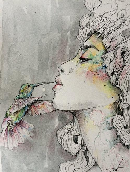 Le baiser du colibri