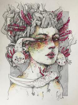 Queen of axolotls