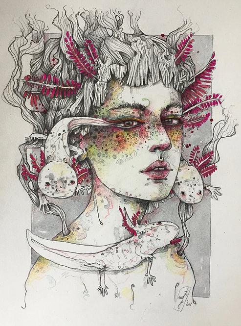 * queen of axolotls *