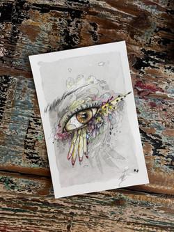 Birdy's eye 4