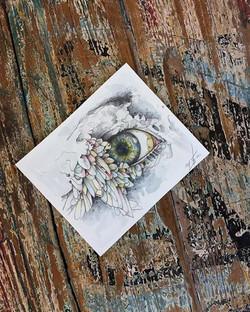 Birdy's eye 2
