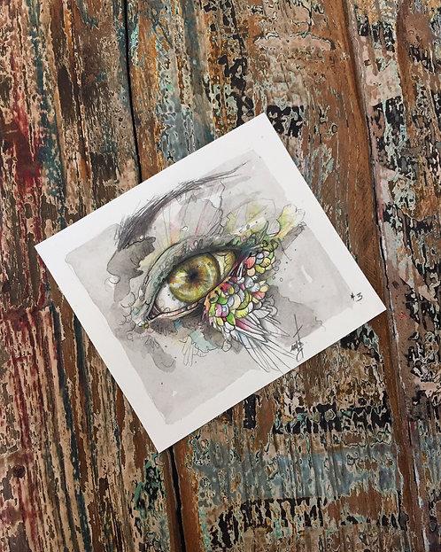 birdy's eye *3