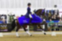 Winter British Dressage Championships Hartpury