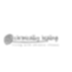 Chronically Healing Logo.png