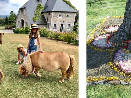 Atelier enfant/parent: se retrouver grâce au cheval et à l'art