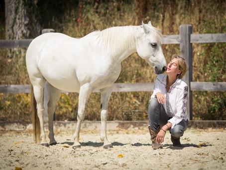Atelier résidentiel: Le cheval pour guide 2 jours de bien-être en immersion dans la nature