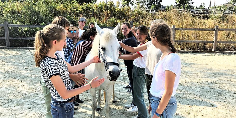 Atelier pour ados (13-16 ans): construire une meilleure confiance en soi
