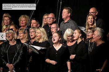Koncert_i_Kulturværftet_2.png
