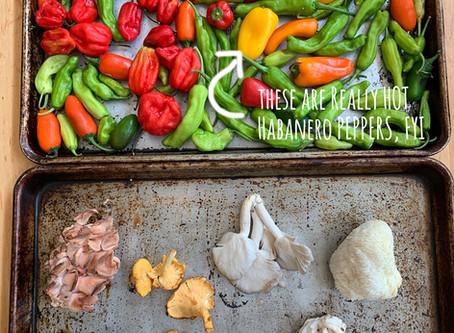 Roasted Pepper Mushroom Souprise