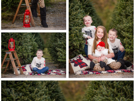 Richardson Kids Christmas Photos