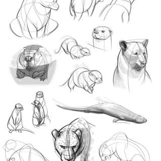 ZooSketches-1.jpg