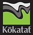 Kokatat-Color-Wave.png