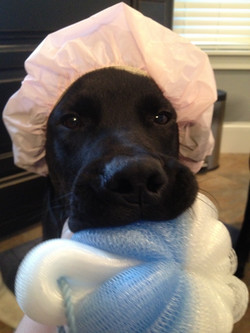 Got my poof ready for my bath!