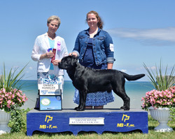 Grand River Kennel Club - BOW/OH
