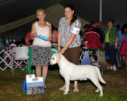 Grand River KC - Best Puppy