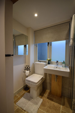Shower room toilet and basin