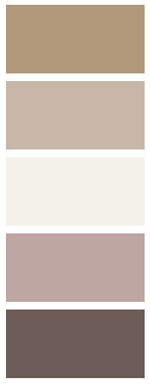 coclour palette-01.jpg
