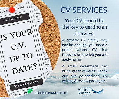 CV services intro-2.png