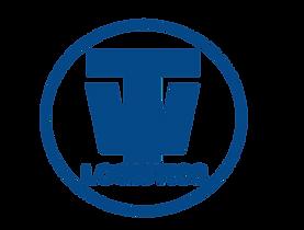teinwheel_logo_edited.png