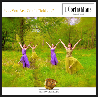 You Are God's Field