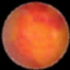 orange contour.png