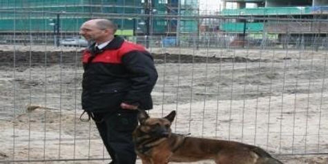 Hondenbewaking ISX Beveiliging