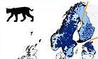 Répartition des lynx en Scandinavie