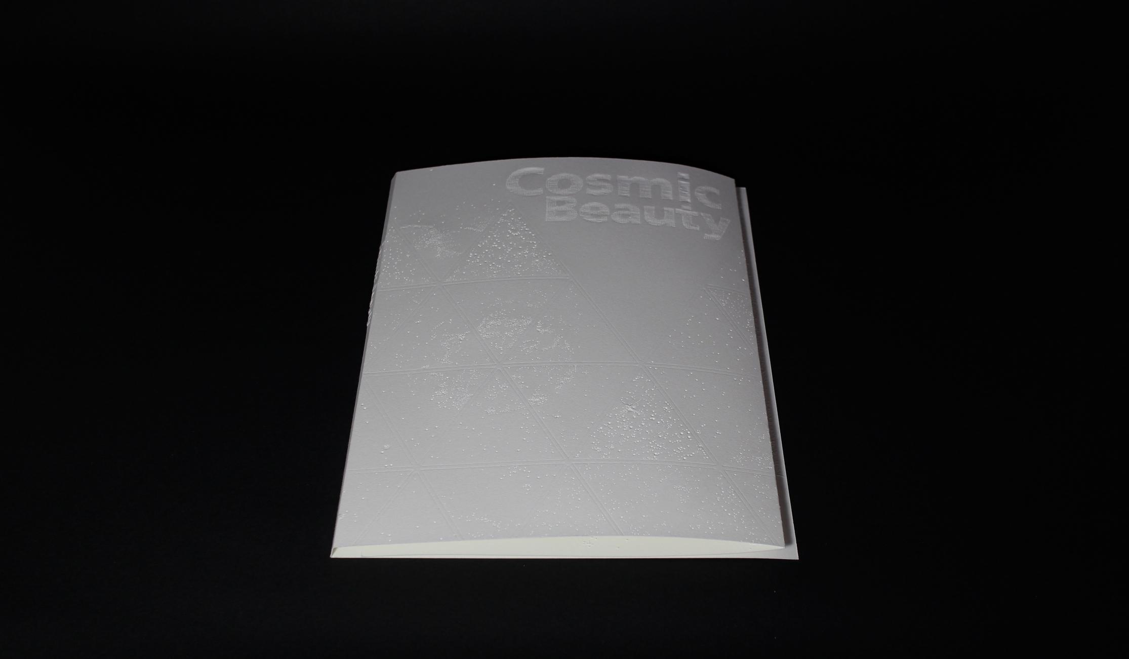 Book(Newton)