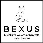 Bexus Logo.png