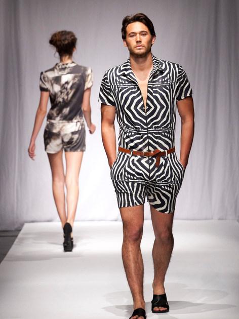 Zebra Mansie.jpg