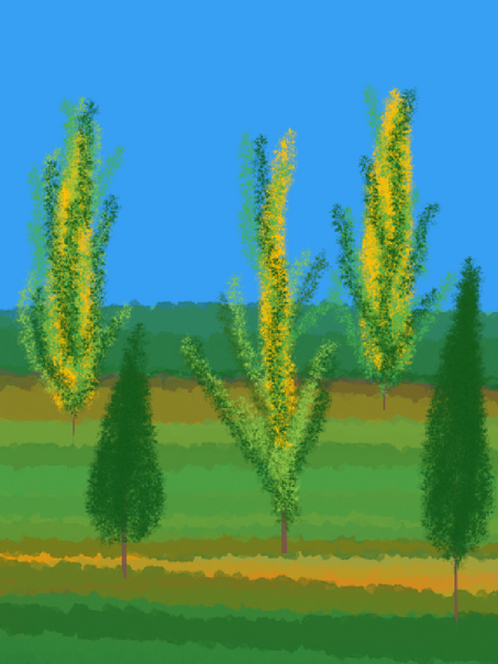 scenic-44.png