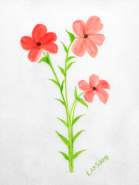 Water color-47.png