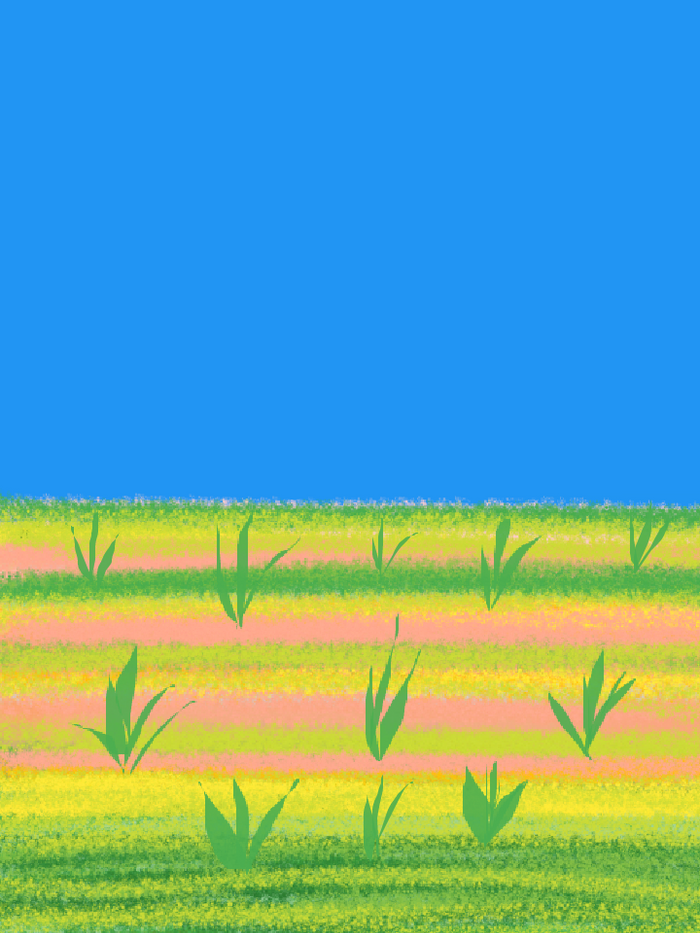 scenic-03.png