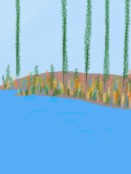 scenic-11.png