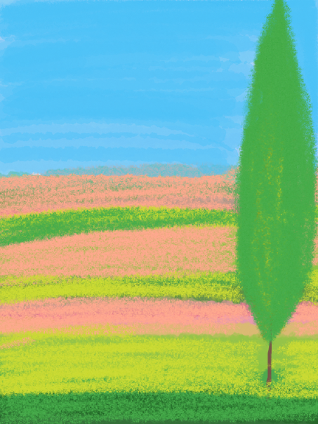 scenic-49.png