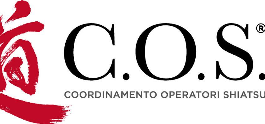 COS_2017_logo_2col_pos.jpg