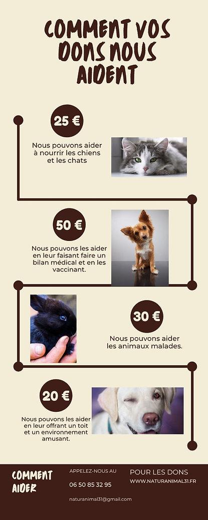 Infographie.jpg