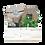 Thumbnail: Horta & Arte Mão no Plantio