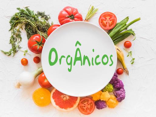 Alimentação saudável começa com cultivo de orgânicos