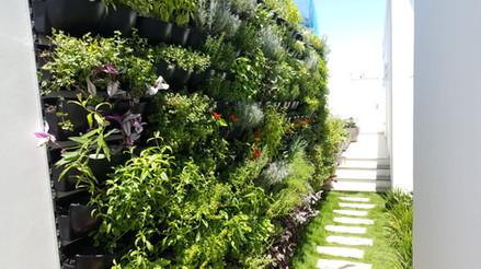 horta vertical com ornamentais
