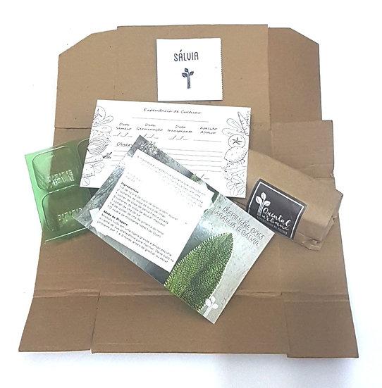 Caixa Dedo Verde Colecionável