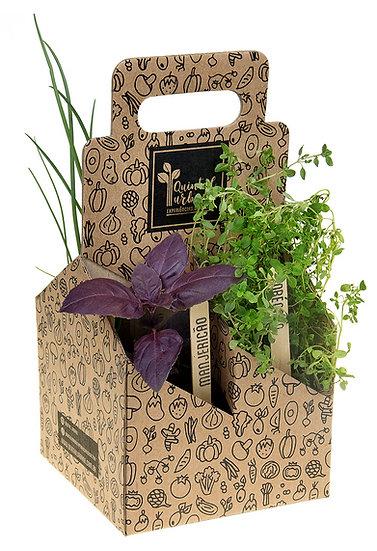 Pack Ervas , Temperos e flores comestíveis