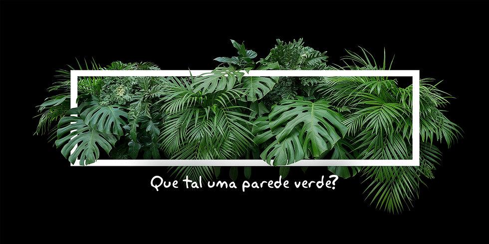 banner parede verde