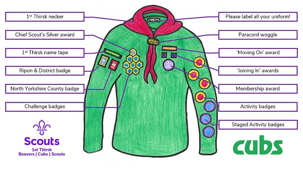 Cub Badge Positions.PNG