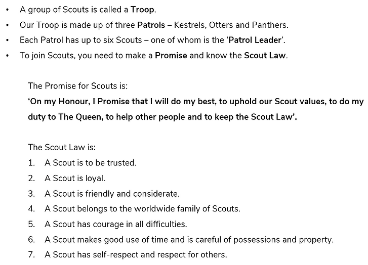 Scout Structure.PNG