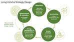 LI Strategy Design.png