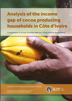 Analysis of the income gap of cocoa producing households in Côte d'Ivoire