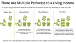Pathways to a Living Income.png