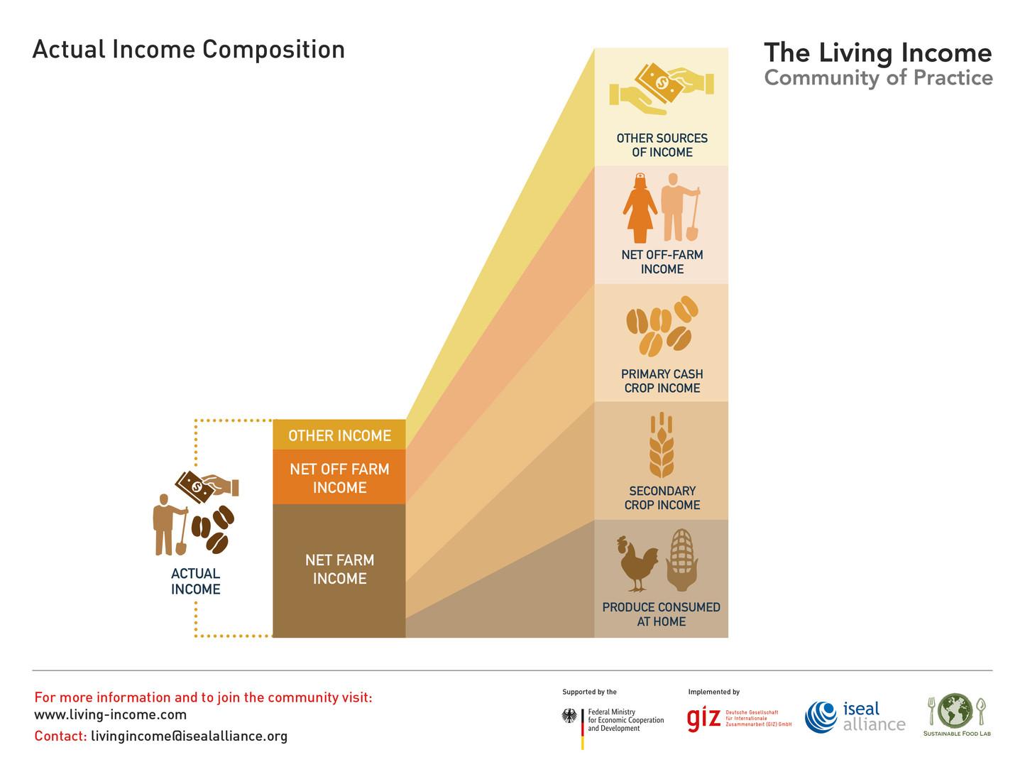 Actual Income Composition - 2019 ©LivingIncomeCommunityofPractice