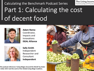 Learning from benchmarking Living Income: 3.1 Calculating the cost of decent food